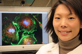 Elyse Lee, Ph.D.